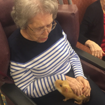 PreciousPets-Program-EaganPointeSeniorLiving (19)