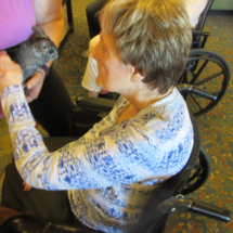 PreciousPets-Program-EaganPointeSeniorLiving (27)